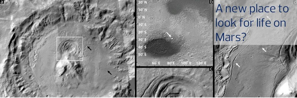 Depressions on Mars could be Oases for Past Microbial Life