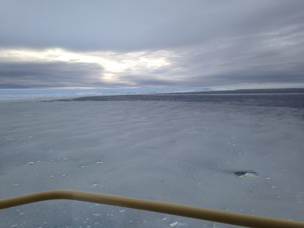 View of ice fields from the bow of ship