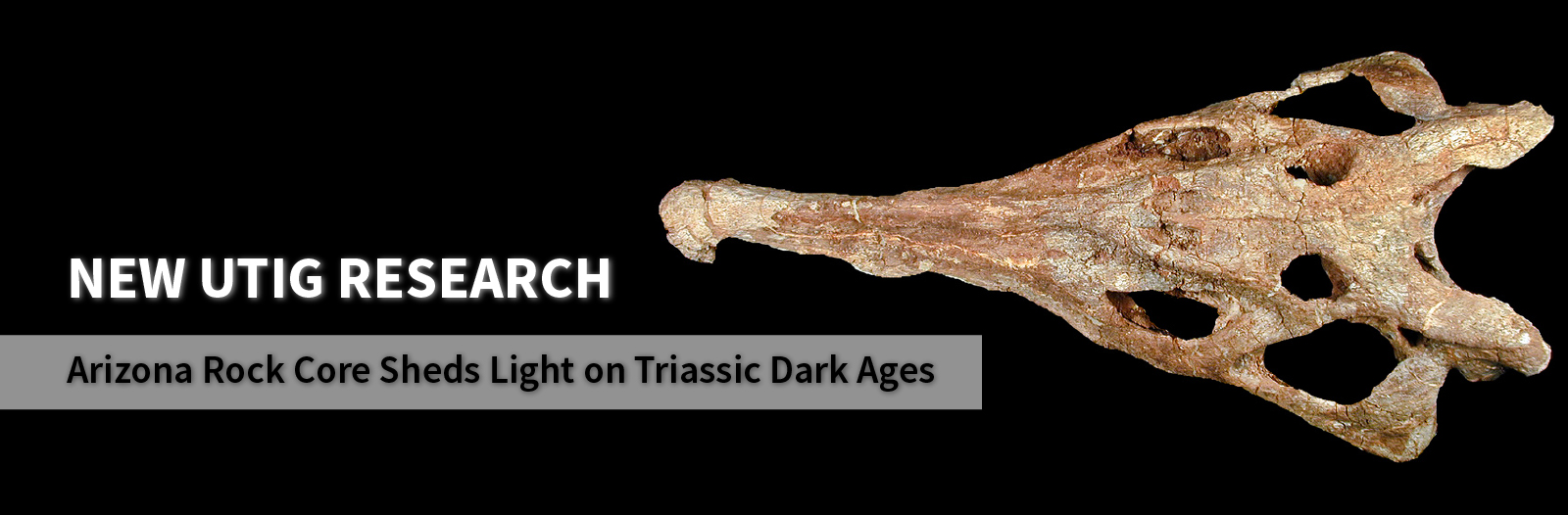 Banner for Arizona Rock Core Sheds Light on Triassic Dark Ages